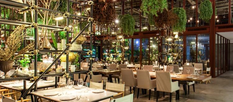Vivarium Restaurant Bangkok Menu